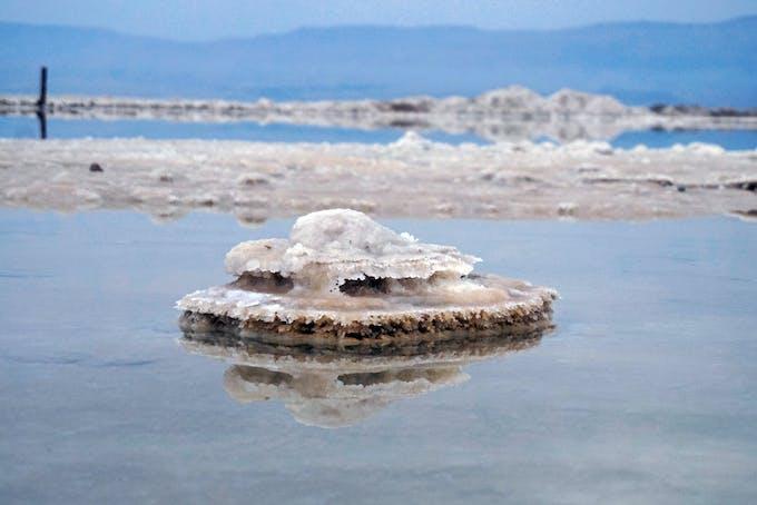 Hvad er saltvand?