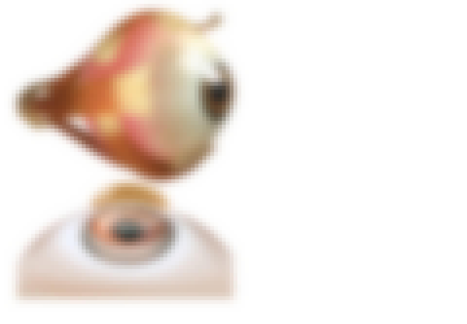 To bilder viser henholdsvis et helt øye og en framhevet hornhinne.
