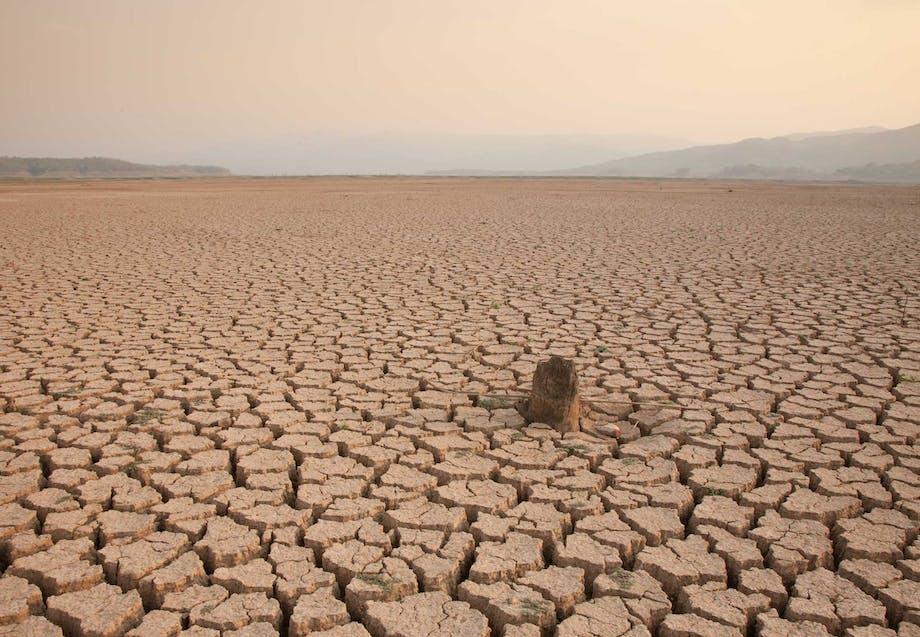 Global opvarmning kan lede til en tør og gold verden