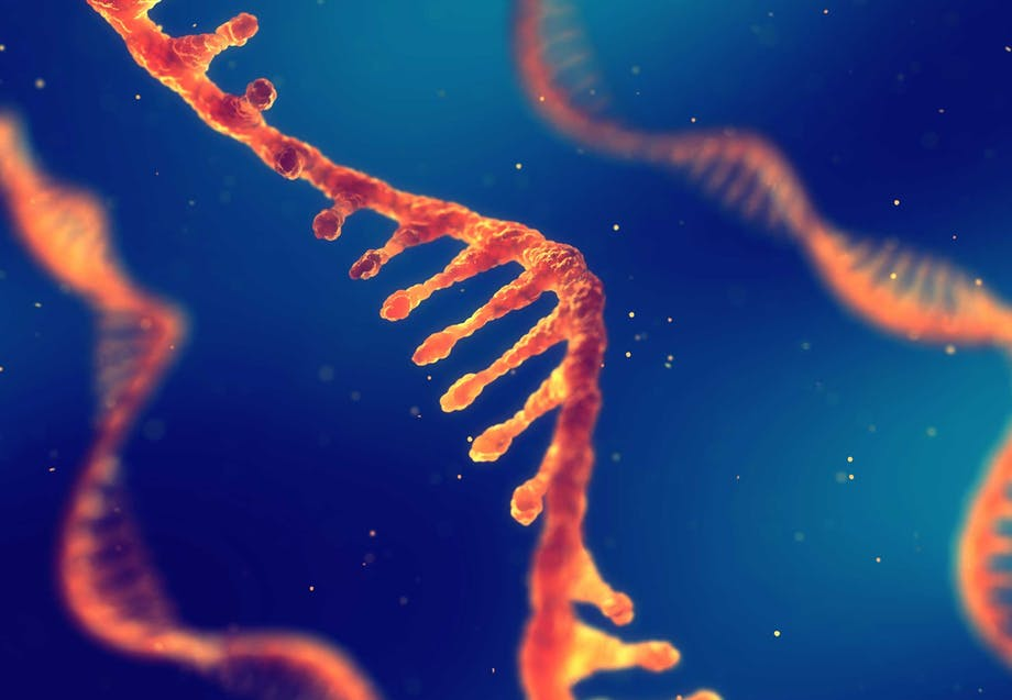 Enkelsträng RNA – virus