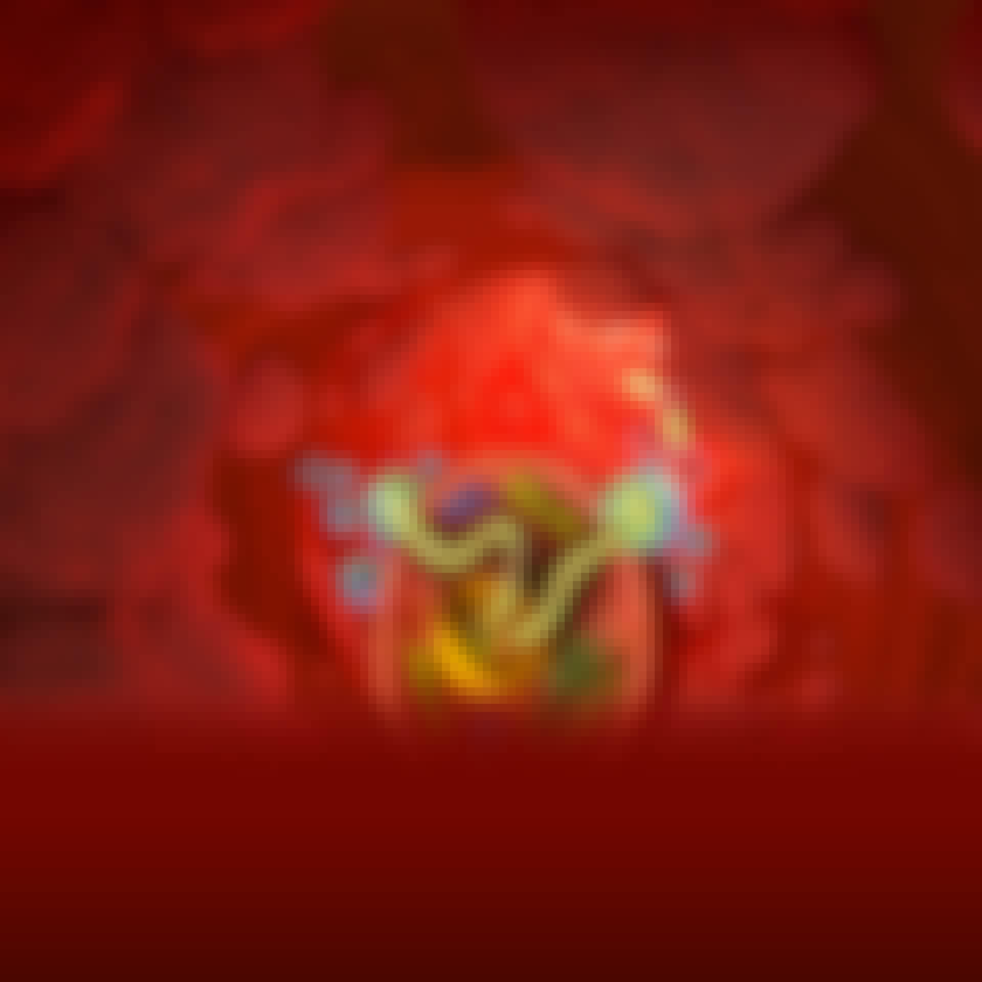 Coronavirusets rna tränger in i cellen.