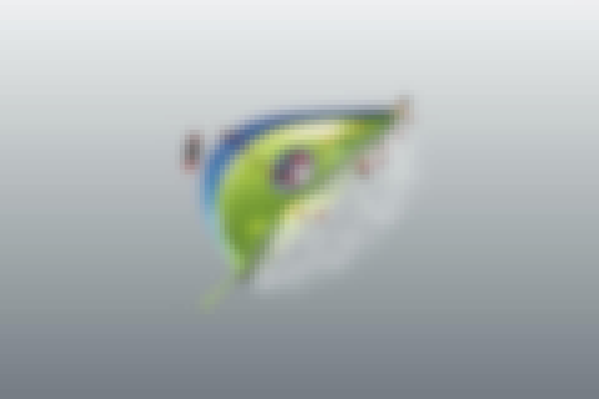 Kunstbladeren - fotosynthese