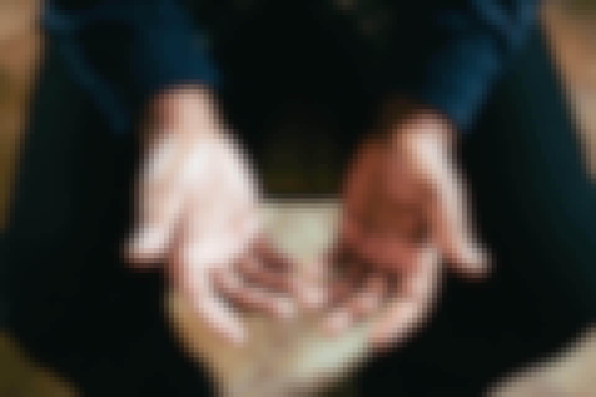 Hvorfor sover hænder og fødder