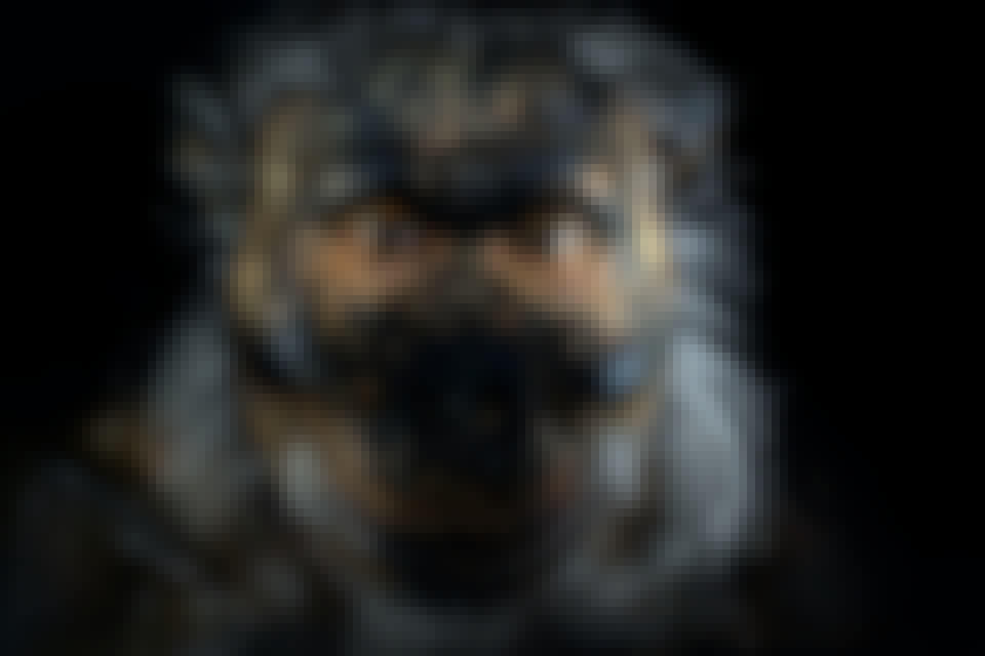 Menneskets udvikling Australopithecus