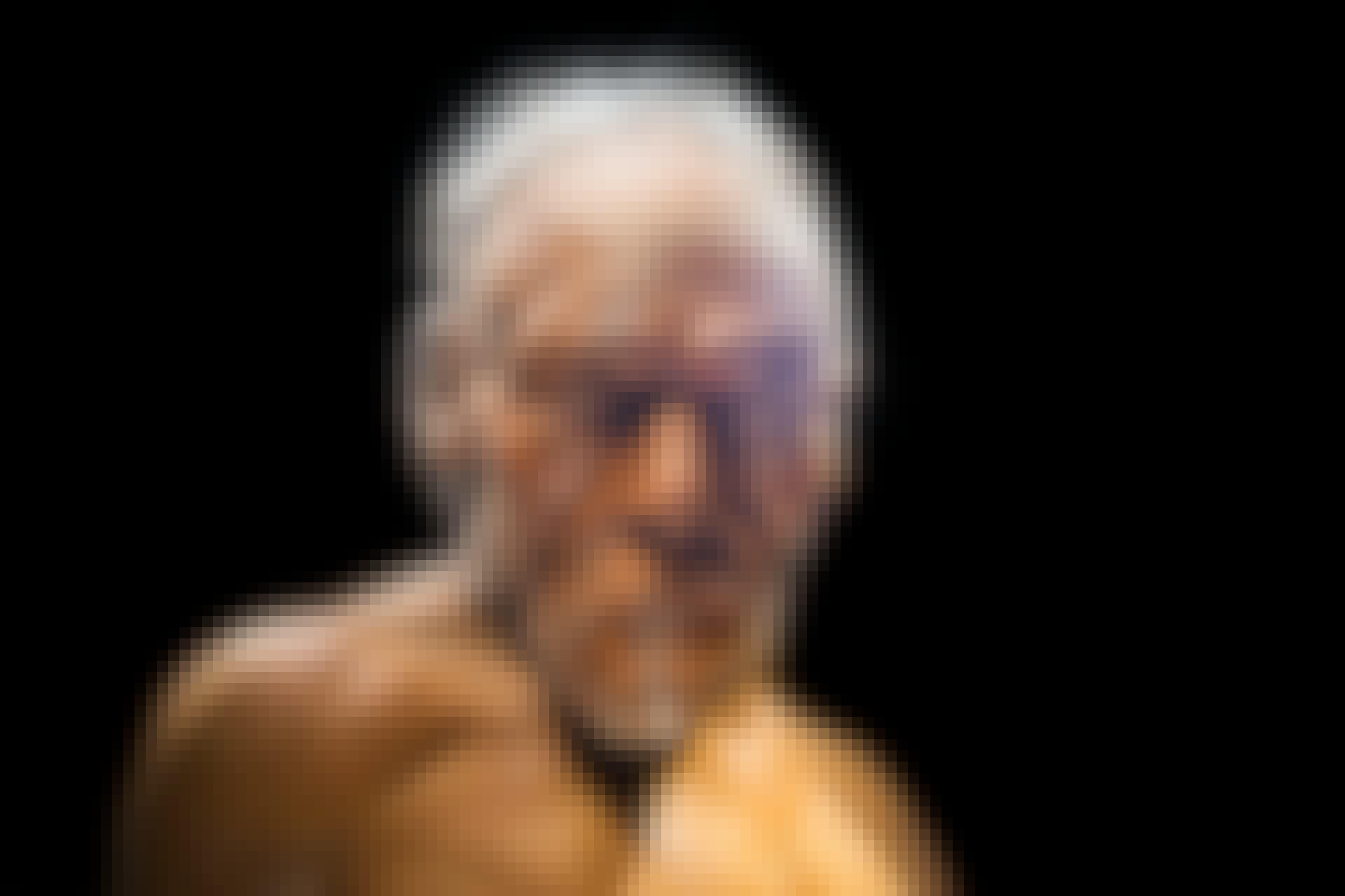 Menneskets udvikling Homo sapiens