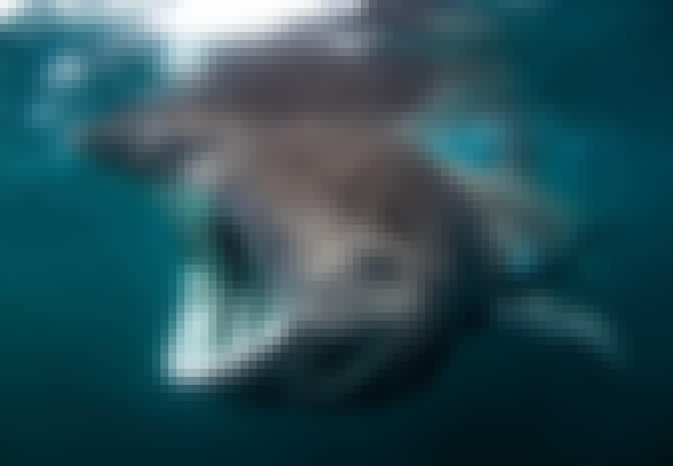 Haier i Europa – brugde