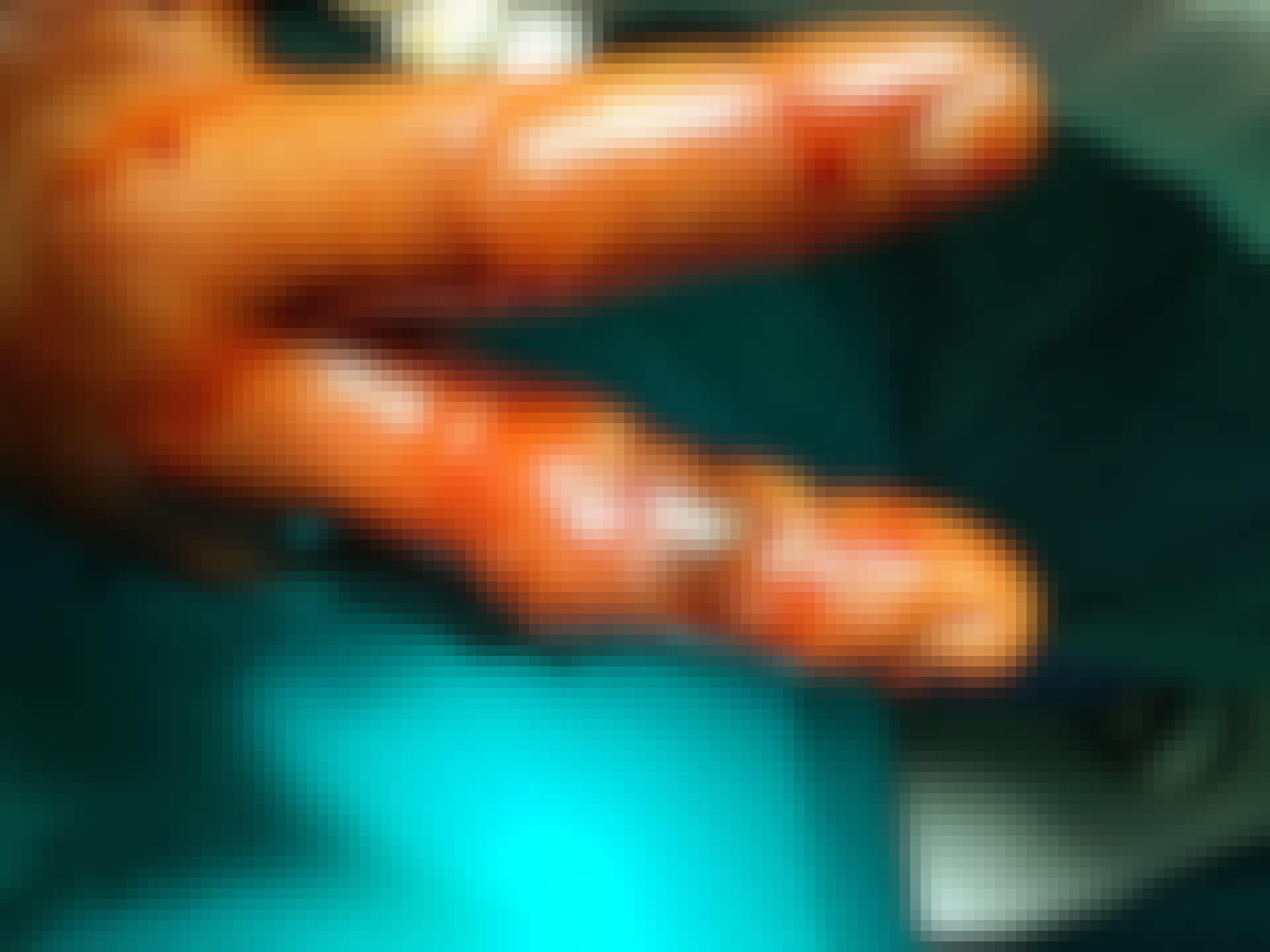 Käärmeenmyrkky on ohentanut verta niin paljon, että sitä tihkuu ihon läpi