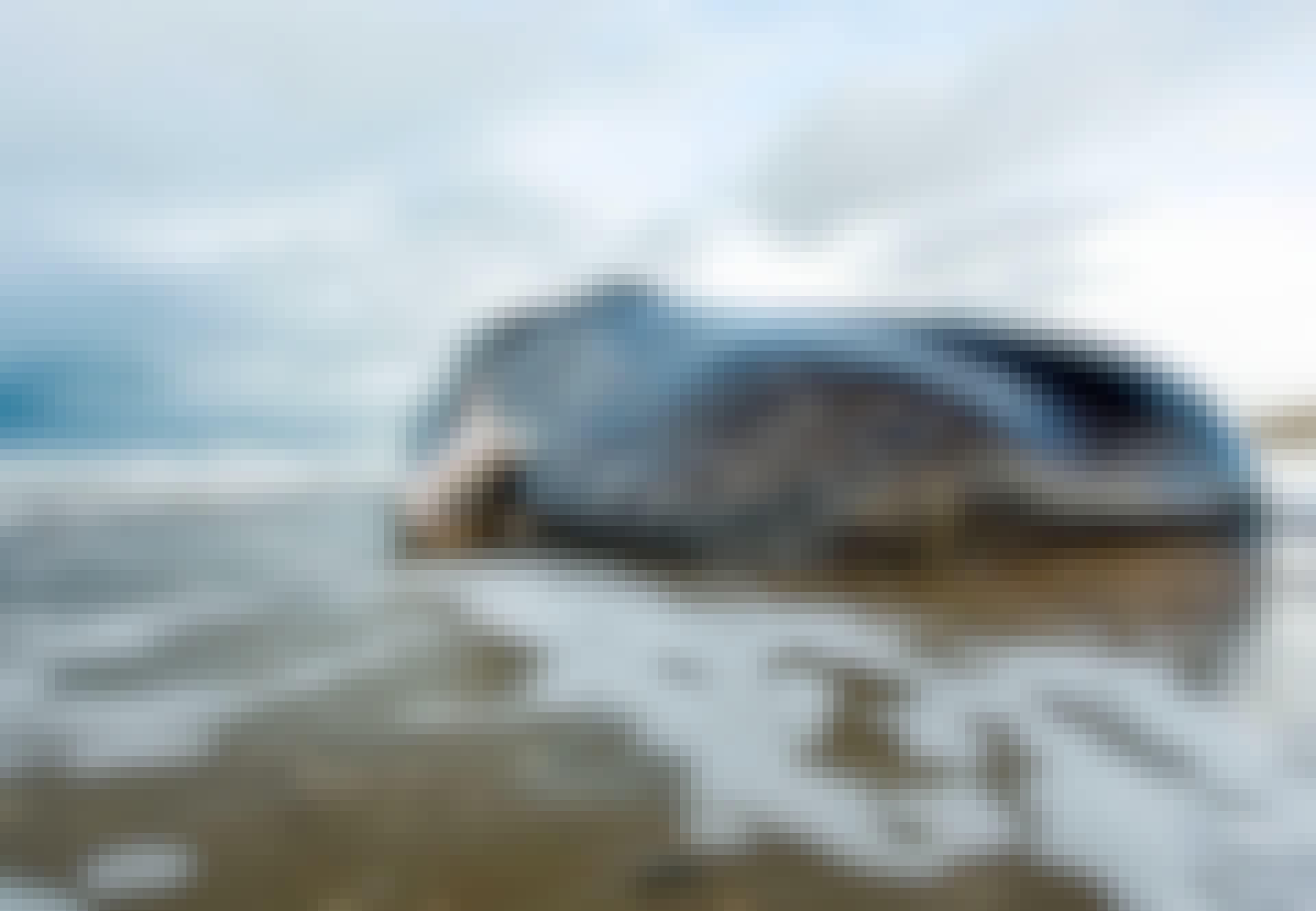 Valas ajautui rannalle vesirajaan