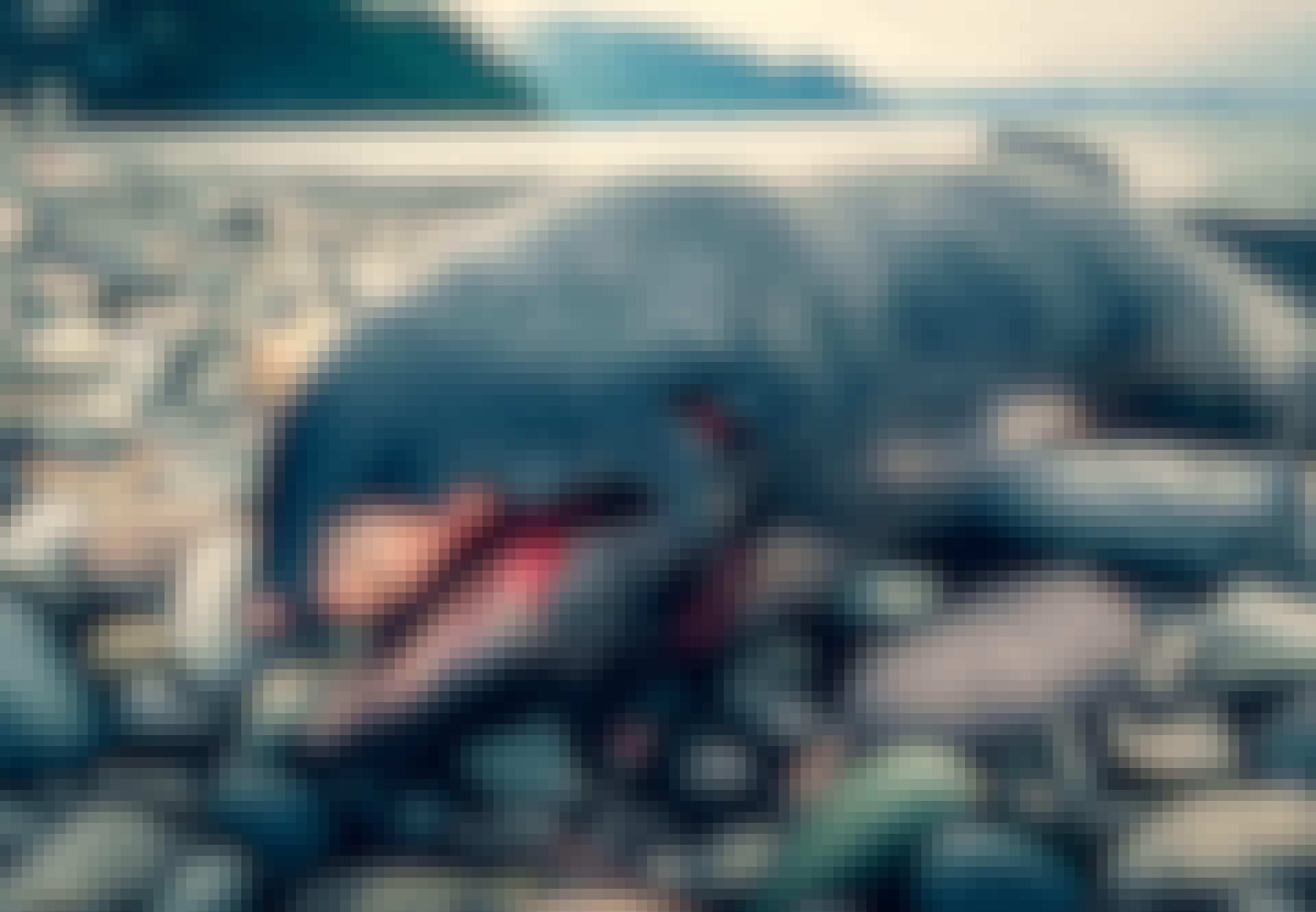 Død hval ligger på stranden