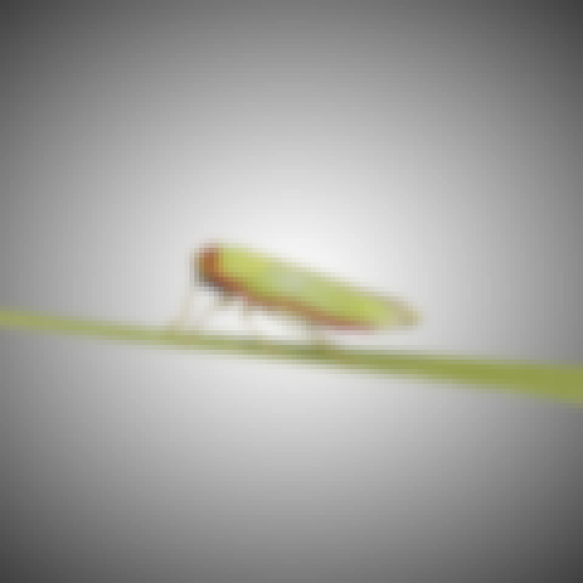 Pesticider påverkar insekternas nervsystem