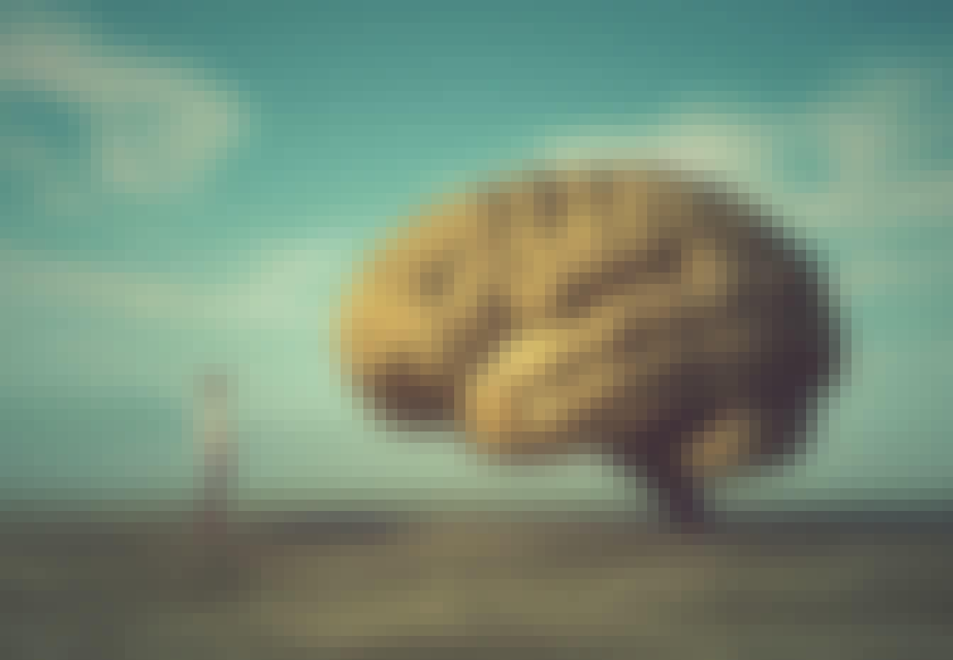 Aivot ja ihminen