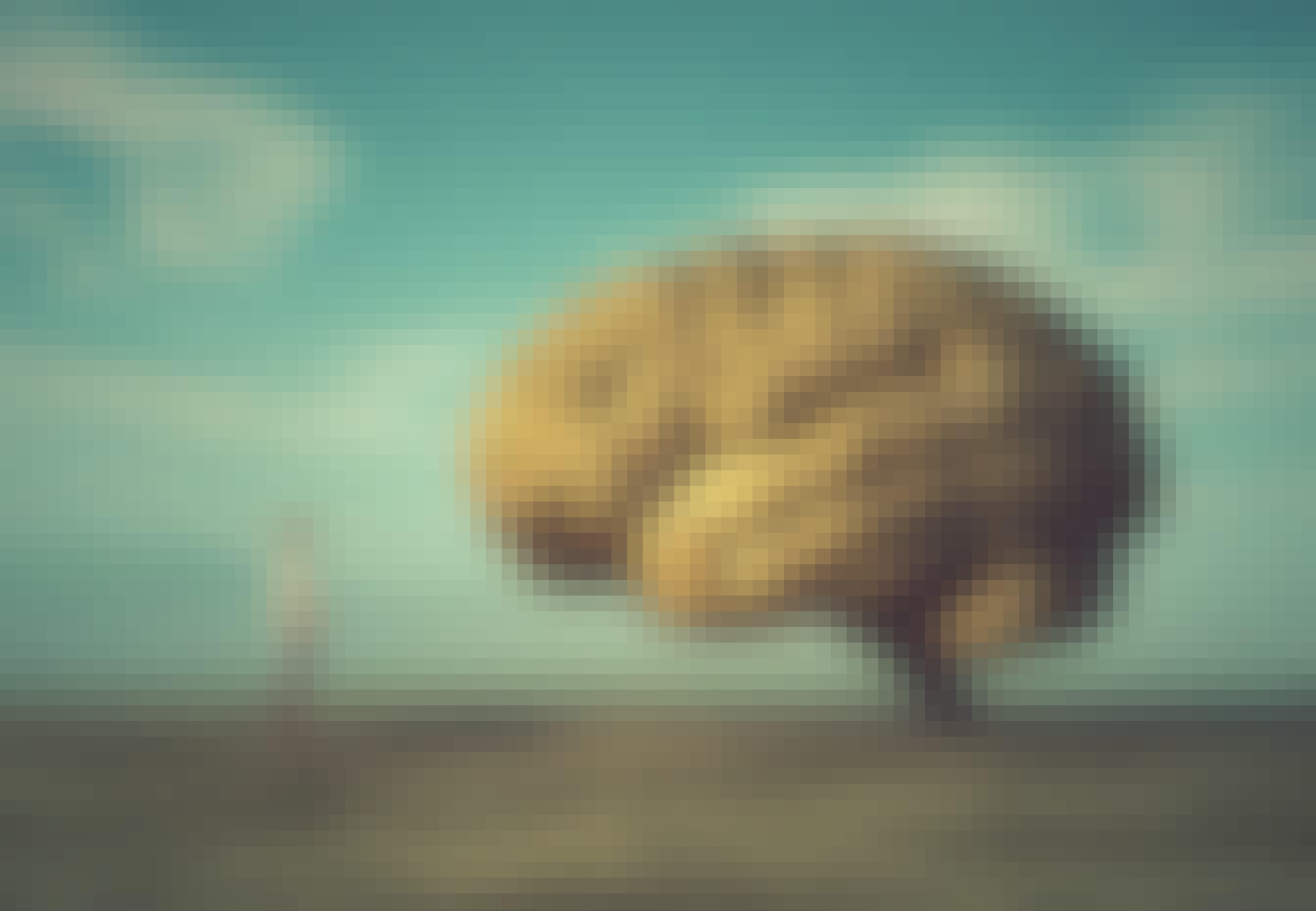 Hersenen tegenover mens