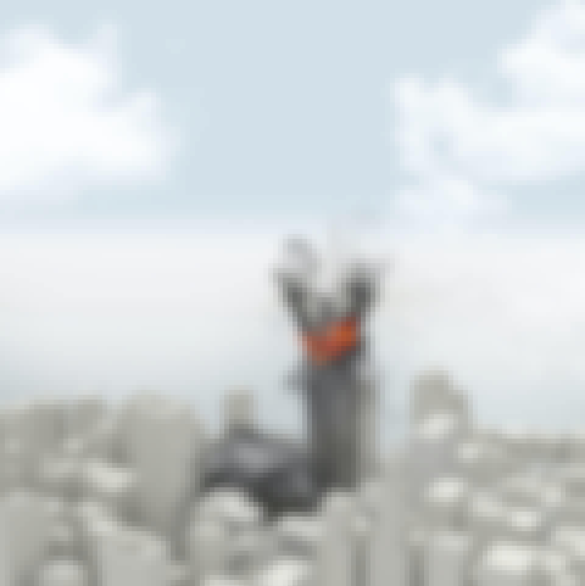 Tornit sortuvat: Vaihe 5