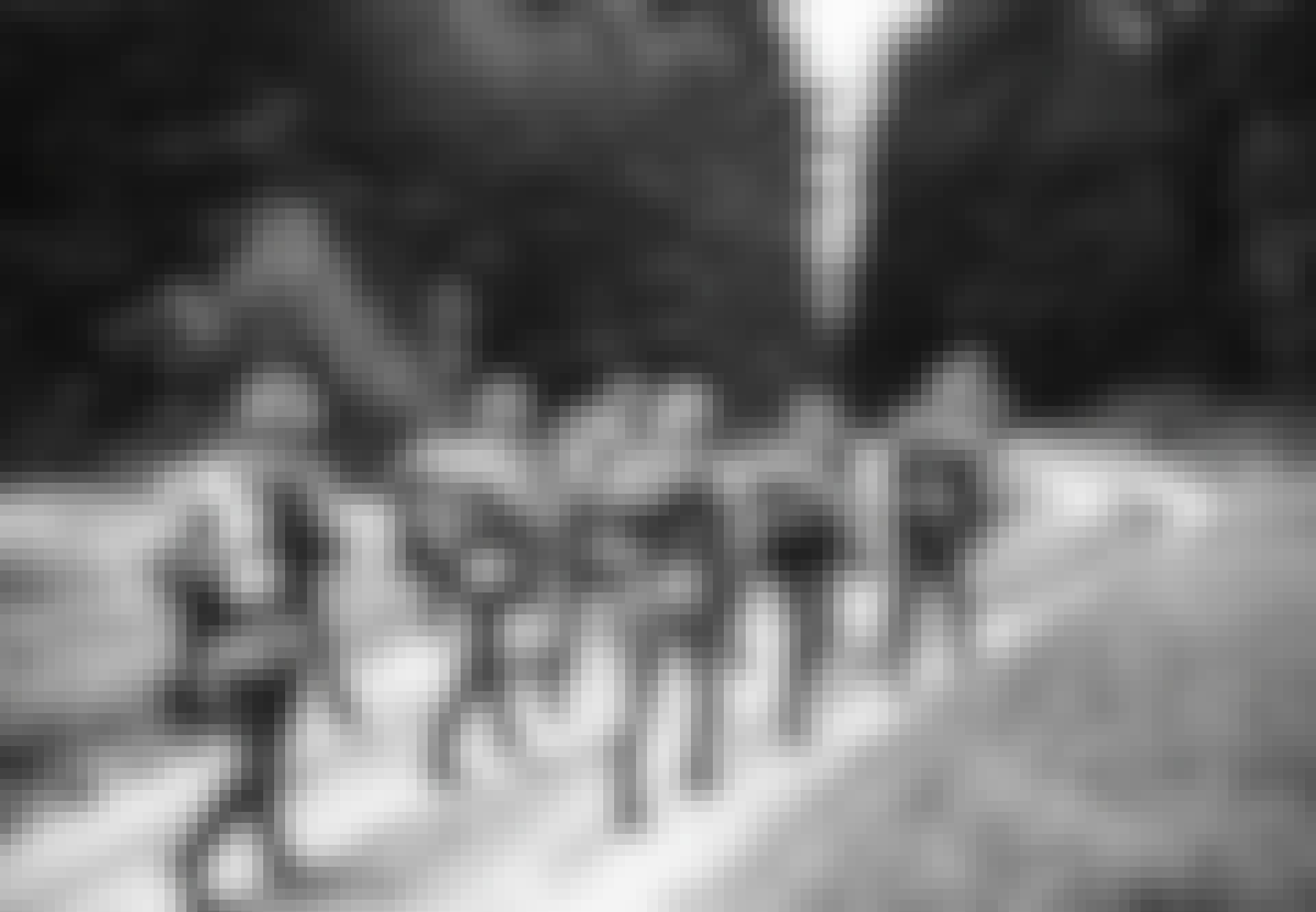 Saksalaiset sotilaat marssivat metsässä