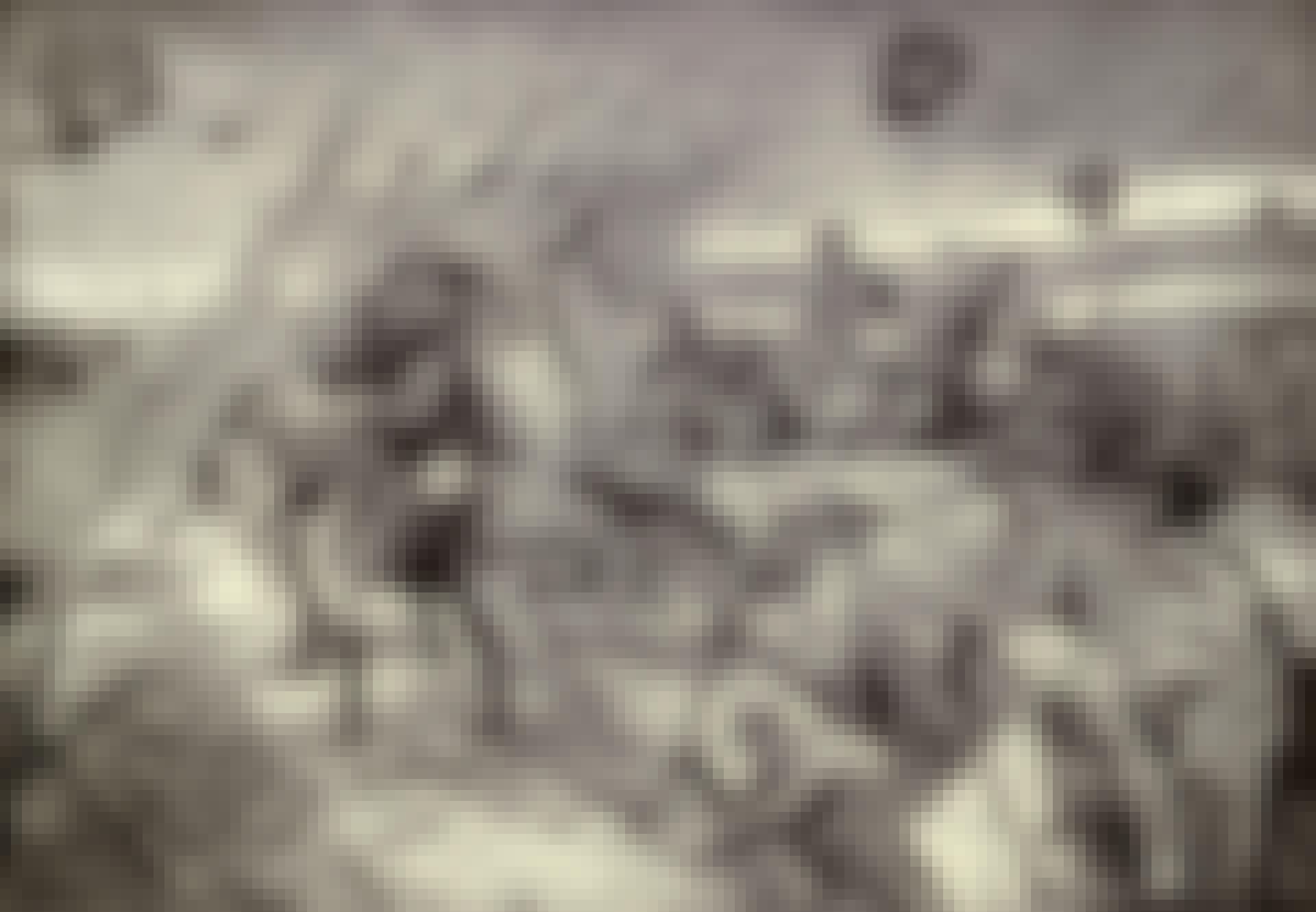 Ylämaan divisioona Sommen taistelussa
