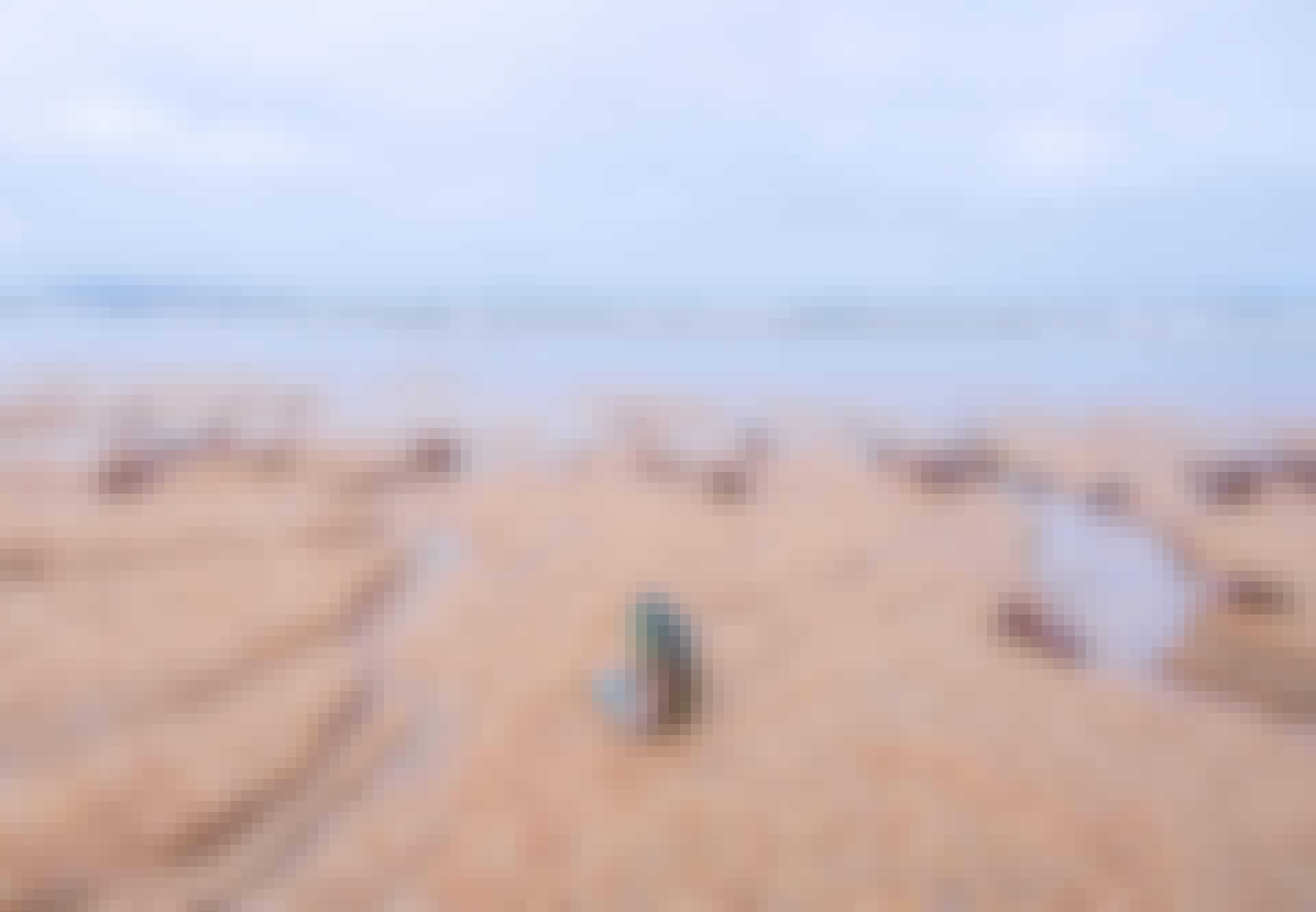 Dode mosselen op een zandstrand