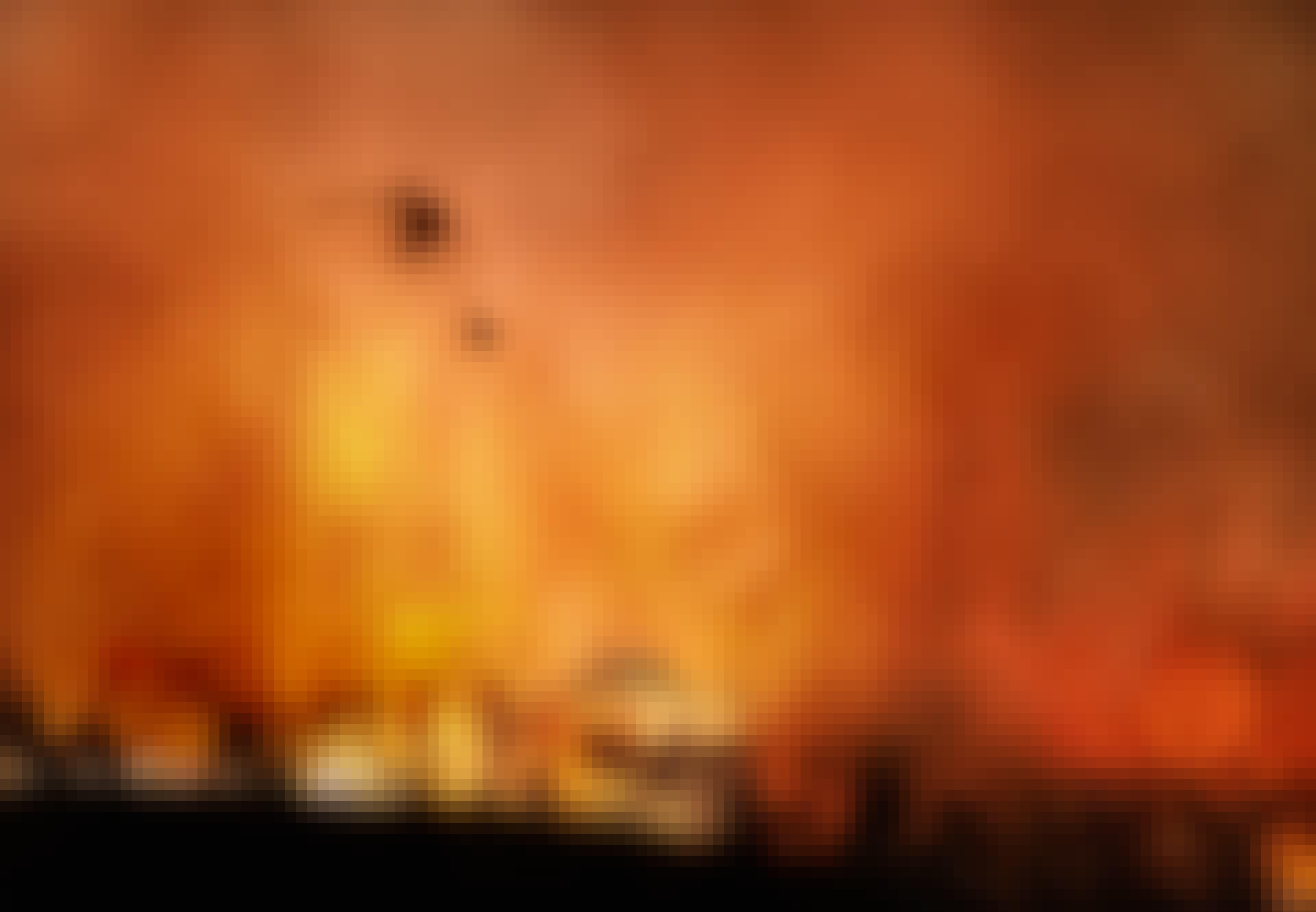 Helikopter blust bosbrand